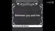 اصطلاح انگلیسی  between you and me