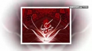 علی فانی / امام حسن مجتبی علیه السلام