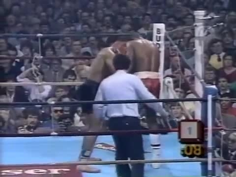 مایک تایسون .vs جِسی فرگوسن 1986