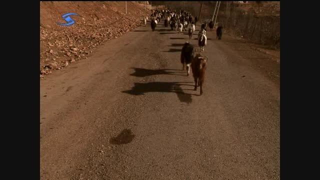 روستای هیر - استان قزوین