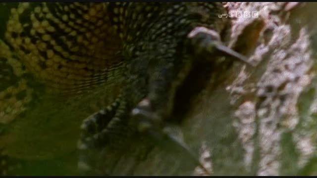 مرگ آفرینان دوبله فارسی - قسمت  چهاردهم
