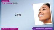 آموزش اعضای بدن به انگلیسی قسمت4