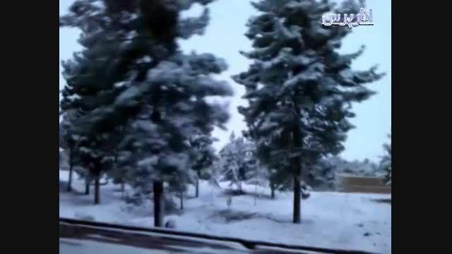 بارش برف در انار