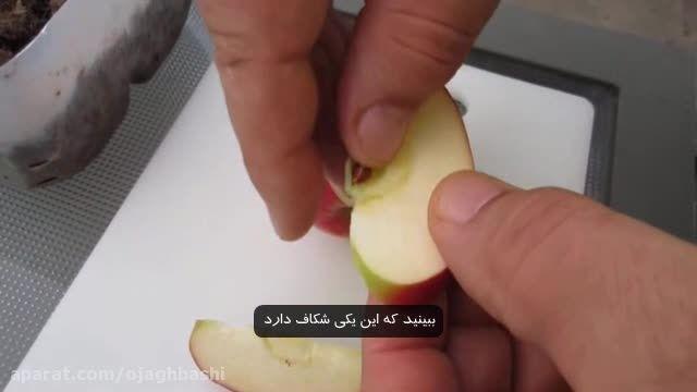 مراحل کاشت دانه سیب