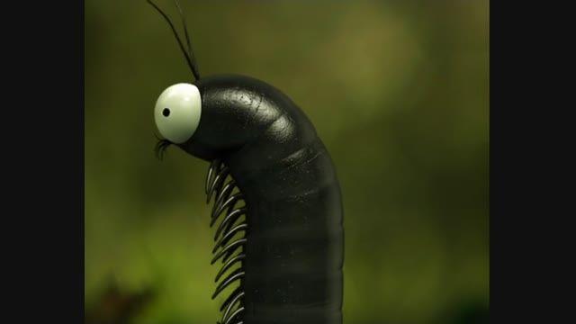 انیمیشن زندگی حشرات (Minuscule) قسمت 43