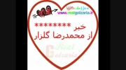 محمدرصا گلزار در اینستاگرام گلزاریا را فالو کرد
