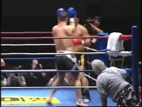 مبارزه اَندی هوگ و برانکو سیکاتیچ 1994