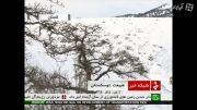 طبیعت زیبای برفی توسکستان