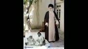 سلامتی سادات بن الزهراء صلوات علی محمد و آل محمد