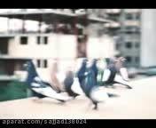 کبوتران نقش در خارج از کشور