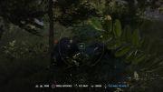 Far Cry 4فرار از دست آقا خرسه!
