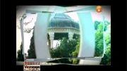 نماهنگ زلف بر باد مده با صدای سالار عقیلی