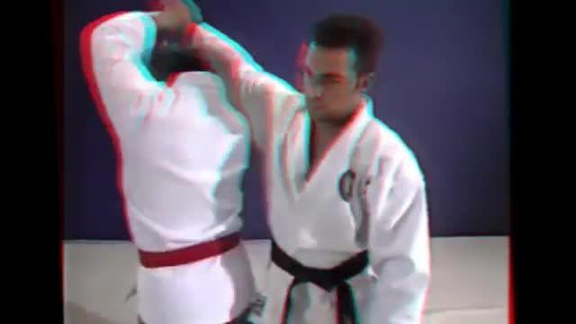 Aikido vs Brazil Jiu jitsu Self Defense Mixed Marti