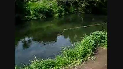 ماهیگیری زییا در طبیعت زیبای ژاپن