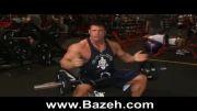 بدن سازی - حرکات پشت بازو