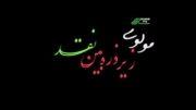 نقد مولوی/بی شرمی های جنسی در اشعار مولوی(دکتر حسین فریدونی)