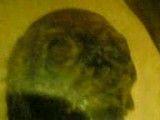 مومیایی یکی از فراعنه مصر