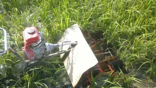 وجین مکانیزه برنج