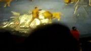 حادثه در سیرک