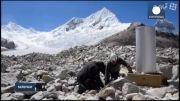یخچال های طبیعی پرو در معرض نابودی است