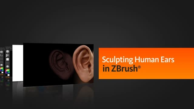 Sculpting Human Ears in ZBrush