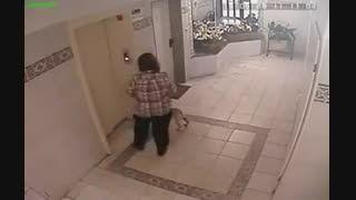 کلیپ خنده دار زن و سگش