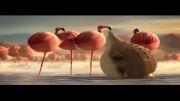 انیمیشن خنده دار حیوانات فست فودی