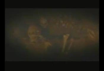 تریلر فیلم ترسناک zombie warz