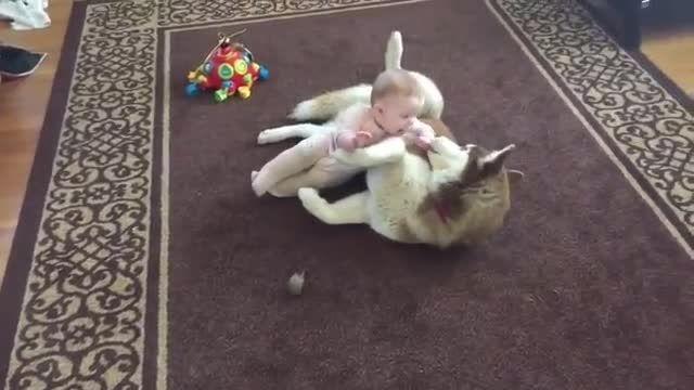 بازی کردن خنددار کودک ناز و سگ زشت