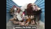 نماهنگ زلزله آذربایجان