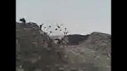فوران گل افشان تنگ در دهستان کهیر