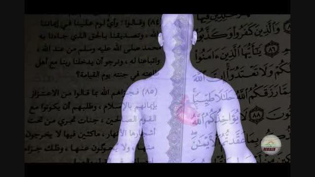 معنی واقعی لغت قلب در قرآن و بررسی اشتباهات ترجمه