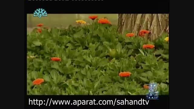درخواست مدیر مجموعه تاریخی تفریحی ائل گلی از مردم تبریز