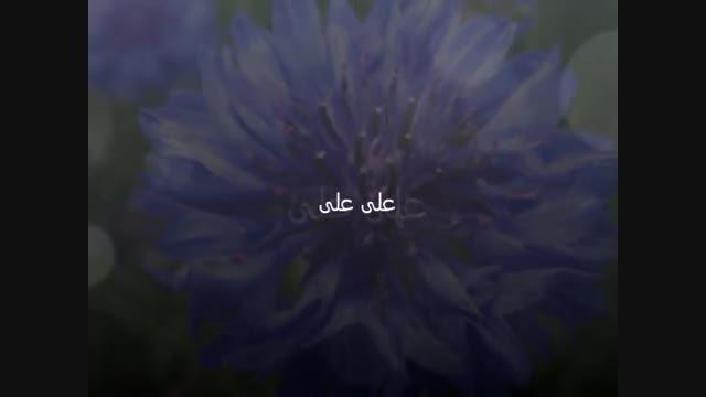 موزیک ویدیو شاد از علی فانی