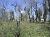 چوب خر سواری در جنگل بندپی مازندران2