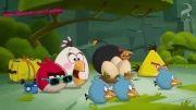 انیمیشن سریال پرندگان خشمگین - angry birds serial angry bird