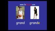 آموزش زبان فرانسه ( etre emotions )