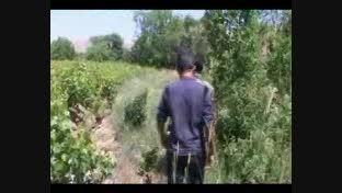 کلیپ زیبای رزمی بسیج - باشگاه ولایت - رزم آزاد، کم حجم