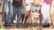 ازدواج دختر ۱۸ ساله با یک سگ!
