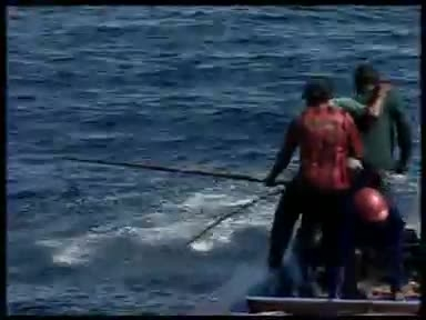 ماهیگیری در مالدیو که صدها جزیره دارد