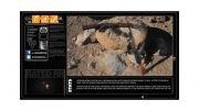 مقاومت Nokia Lumia 928 در برابر گلوله