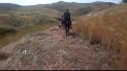 خر  سواری