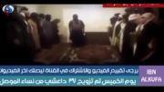 ازدواج اجباری و جمعی تروریست های داعش با دختران موصل