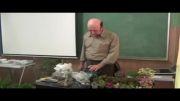 کارگاه ساخت باغ شیشه ای (تراریوم)