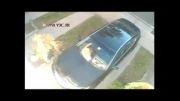 خسارت زدن ناجور گربه به ماشین یه بخت برگشته