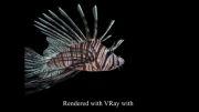 آموزش انیمیشن درمایاmayaرجینگ نوعی از ماهی  rigging  fish