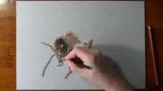 نقاشی  حرفه ای رسم زنبور عسل!!