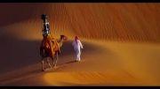 Google Camera On A Camel