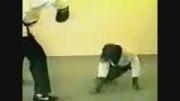 میمونه کاراته کار