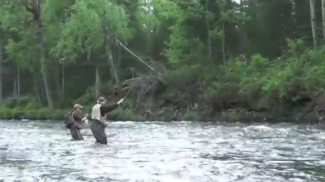 لذت ماهیگیری ماهی ازاد بزرگ